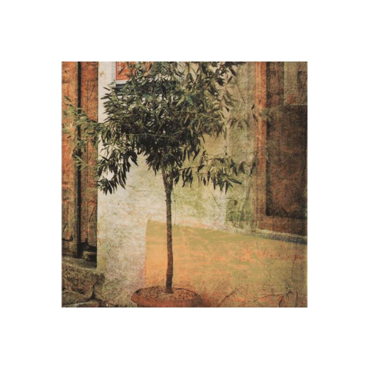 Conjunto Piemonte - Azulejos para interiores como Comercios Mainzu Milano Decor de Mainzu