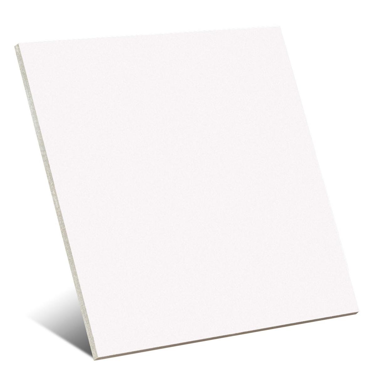 Valencia White 25x25 (m2)