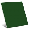 Color Verde Brillo 20x20 cm (caja 1 m2)