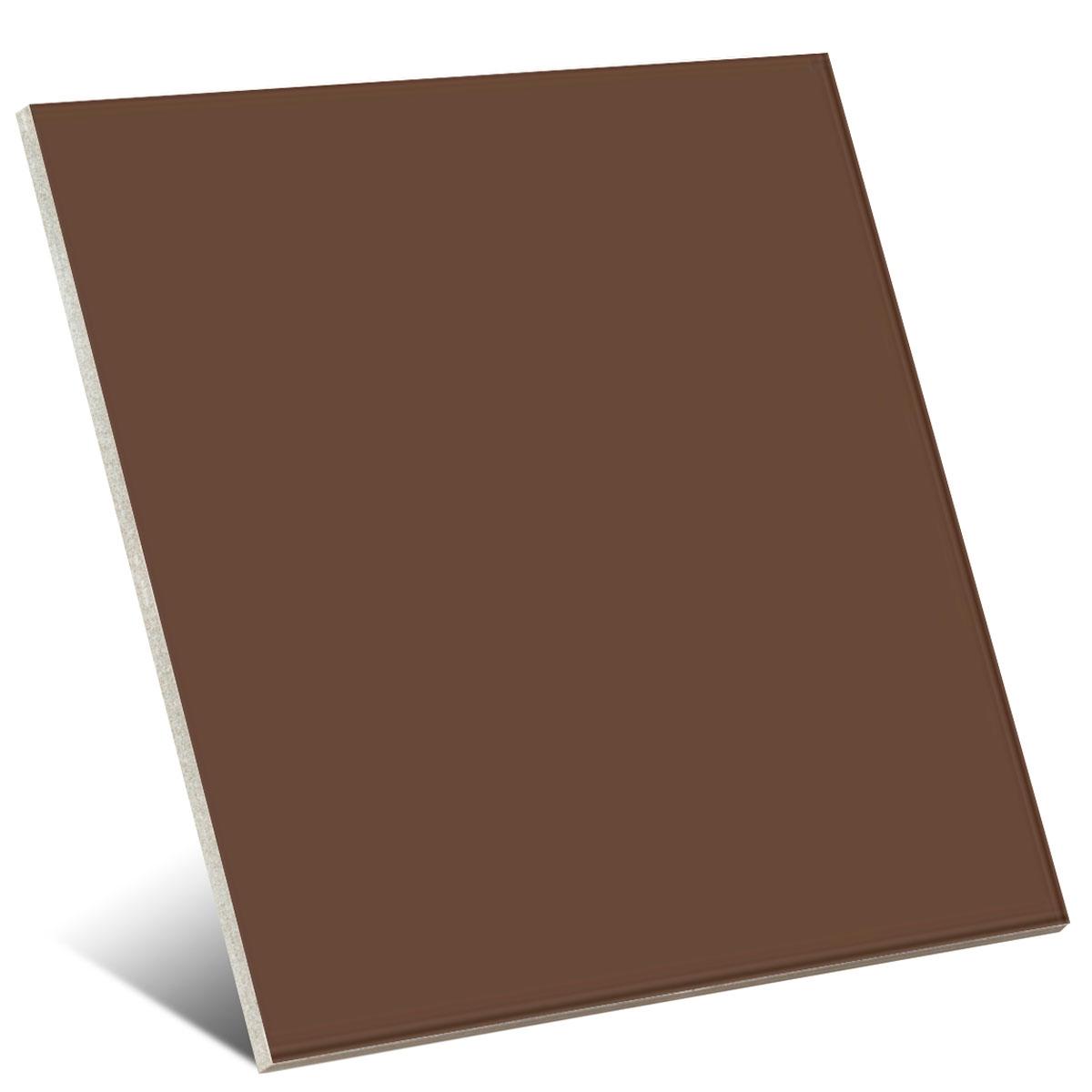 Color Café Brillo 20x20 cm (caja 1 m2)