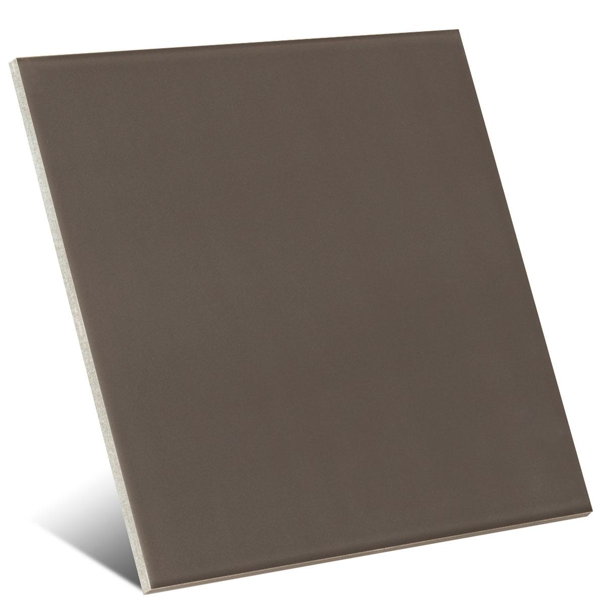 Color Antracite Mate 20x20 cm (caja 1 m2)