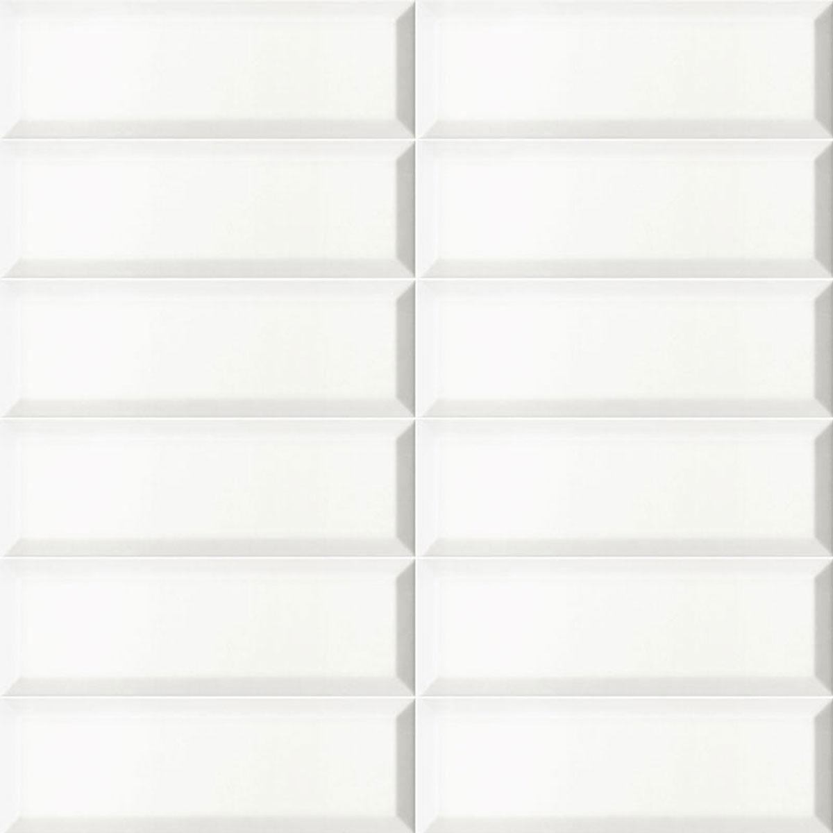 Bissel Blanco Mate 10x30