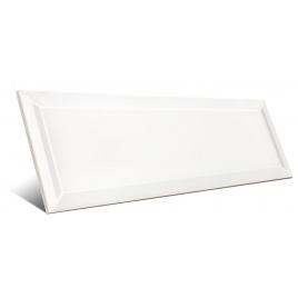 Bissel Blanco Brillo 10x30