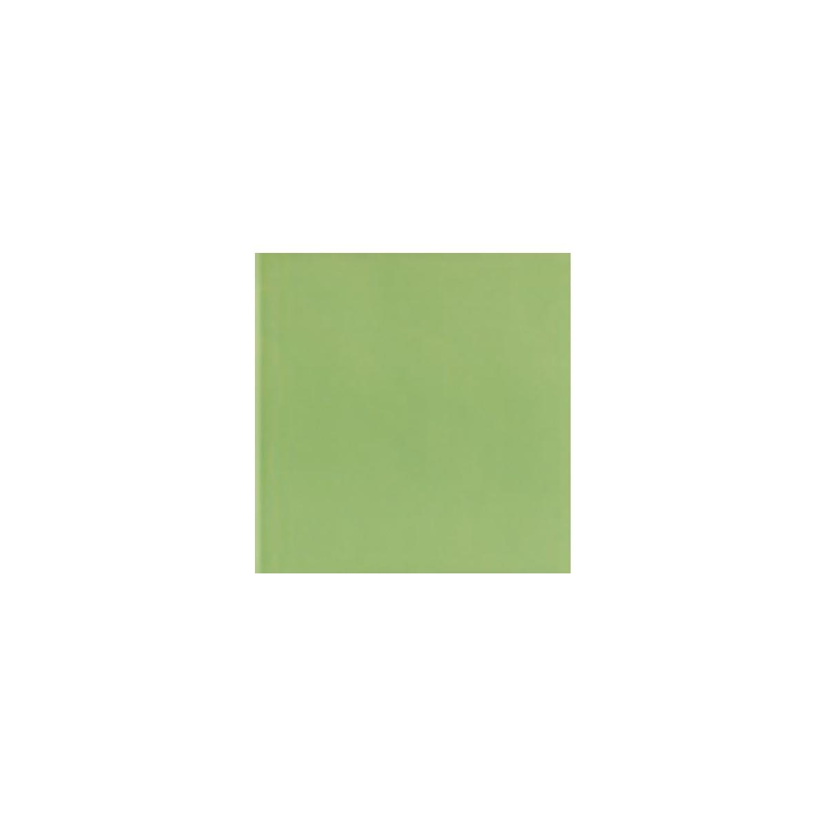 Color Pistacho Brillo - Colección Colores Brillo - Marca Mainzu