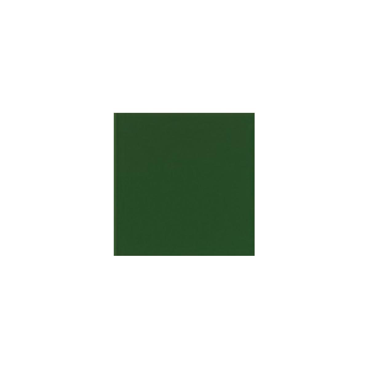Color Verde Brillo - Colección Colores Brillo - Marca Mainzu