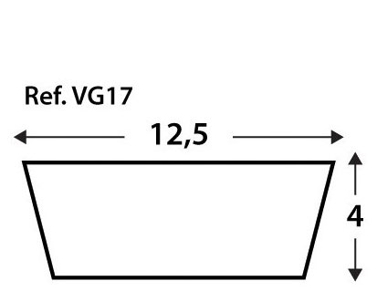 Viga Vg17