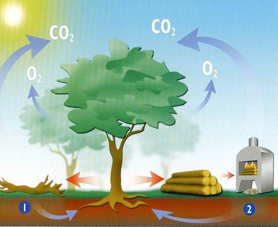 Emisión de CO2 de las estufas y chimeneas